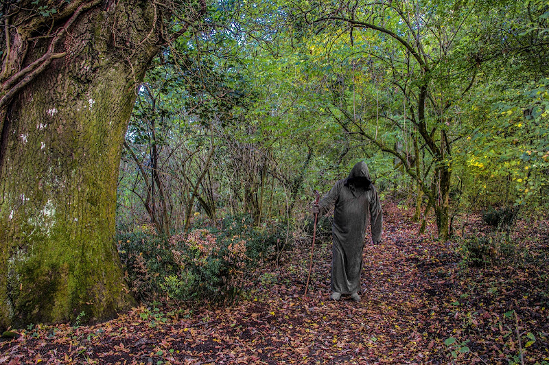 Il guardiano dell'autunno di si