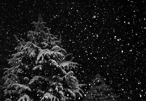 """""""Nevicata. La metamorfosi del mondo avviene in silenzio"""" di Norasmind"""