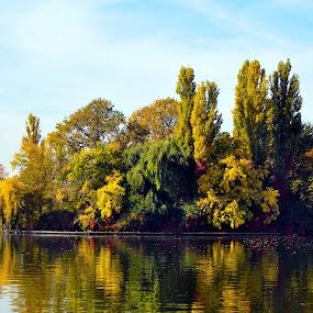 autumn colors by Mihai Nita - Uncategorized All Uncategorized ( autumn, trees, lake, water mirror,  )