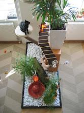 Photo: Katzenzimmer - Kratzbaum Nr. 1 von oben