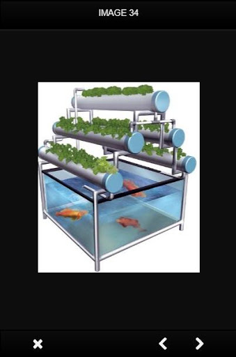 Hydroponics Design screenshot