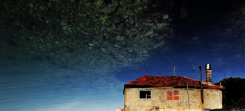Ostriche dal cielo di cladel