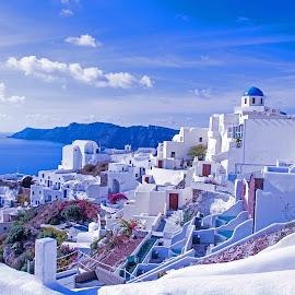 Santorini, Greece by Will McNamee - City,  Street & Park  Vistas ( mcnamee2169@yahoo.com, dld3us@aol.com, gigart@aol.com, danielmcnamee@comcast.net, ronmead179@comcast.net, aundiram@msn.com,  )