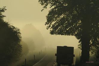 Photo: Landstraße im Nebel