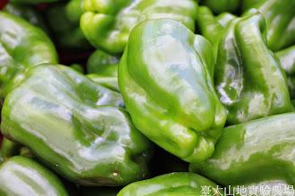 Photo: 拍攝地點: 梅峰-一平臺 拍攝植物: 青椒 拍攝日期: 2014_09_27_FY