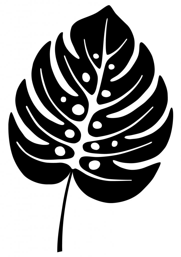 A black leaf that symbolizes Yin