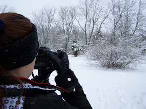 Photo: Rhonda taking a picture of a big bush covered in snow.