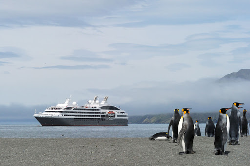 le-boreal-in-antarctica.jpg - The Ponant luxury expedition ship Le Boreal in Antarctica.
