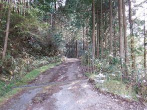 林道へ入る