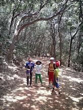 Photo: Jungle Trail