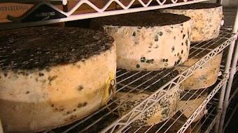 Vermont Cheese - USA