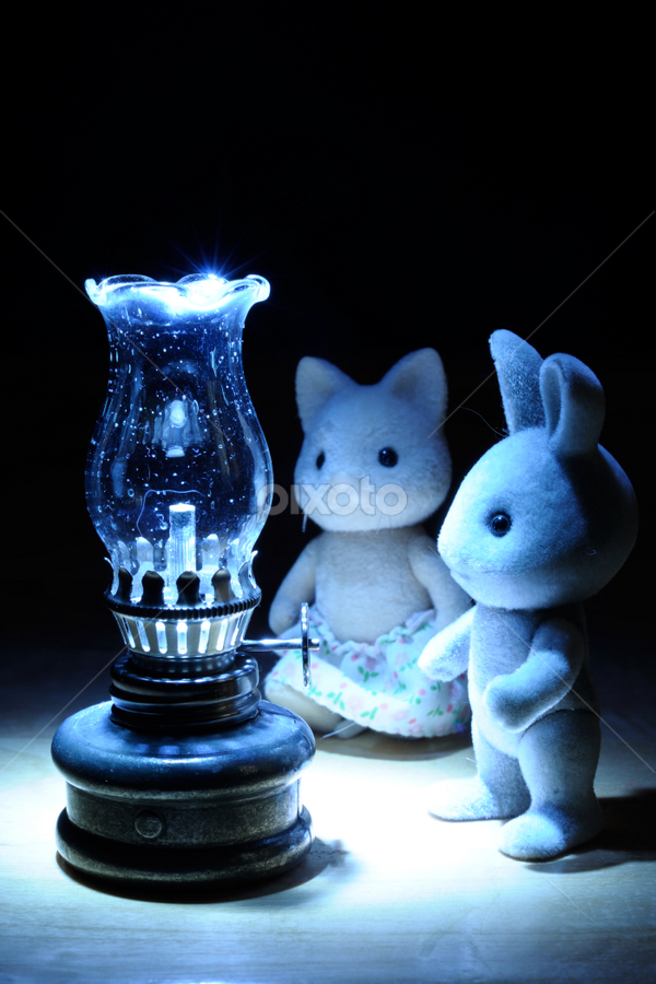 Magical lamp by Igor Baranov - Artistic Objects Toys ( Fine Art, Conceptual, Photography, Photo Manipulation )