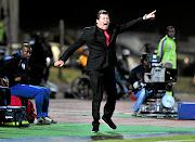 Luc Eymael, who joined Black Leopards as coach last week, led them   to a 1-0 win over Bloemfontein Celtic.