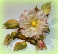 Photo: Цветок из ткани в прическу -шиповник для ободка - японская техника