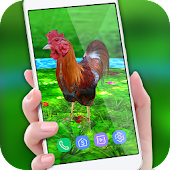 Rooster Escape Live Wallpaper : Birds Backgrounds