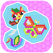 Mosaic Hex Puzzle 2: Hexagon Photo Match