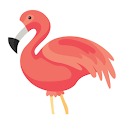 Flamingo Animator icon