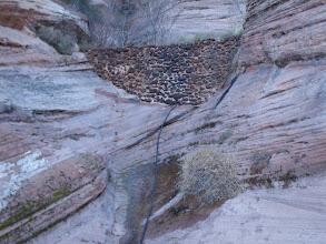 Photo: A little check dam