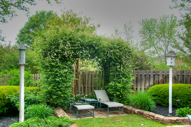Inspired Ideas For Your Backyard That Could Add Value To Your Home
