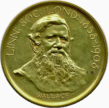 Photo: Wallace's unique gold version of the Darwin-Wallace medal of the Linnean Society of London (Wallace side). Awarded to him in 1908 on the 50th anniversary of the reading of the Darwin-Wallace paper in which evolution by natural selection was proposed for the first time. Copyright A. R. Wallace Memorial Fund.