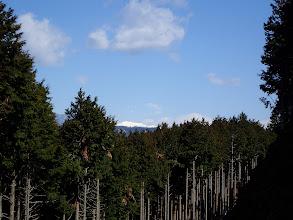 林道越しに荒川岳などが見える