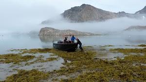 The Aqualuk returns to Kulusuk after dropping us off on Apusiaajik Island
