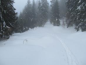 Photo: 13.Właściwy szlak jest ledwo ledwo przetarty przez narciarza, zapewne skiturowego.