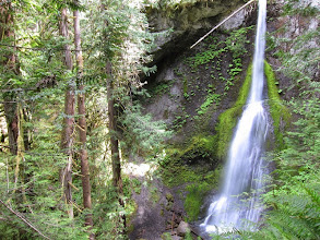 Photo: Pretty cool... 90ft Marymere Falls in the rain forest.