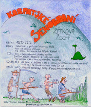 Photo: Plakát 2007, asi nejpunkovější ročník