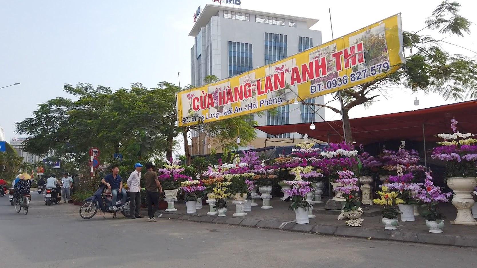 Chợ hoa Tết 2020 đường Lê Hồng Phong ở Hải Phòng 3