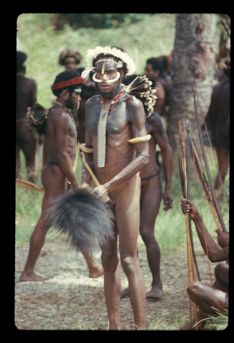 Papua. Tribes Baliem Valley Time Travel. Traditional Gear for Papuan Warriors, bows and arrows