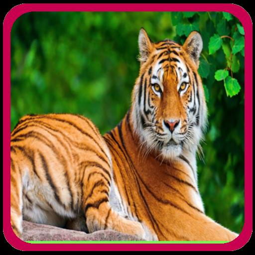 Animal sounds for Kids 教育 App LOGO-硬是要APP