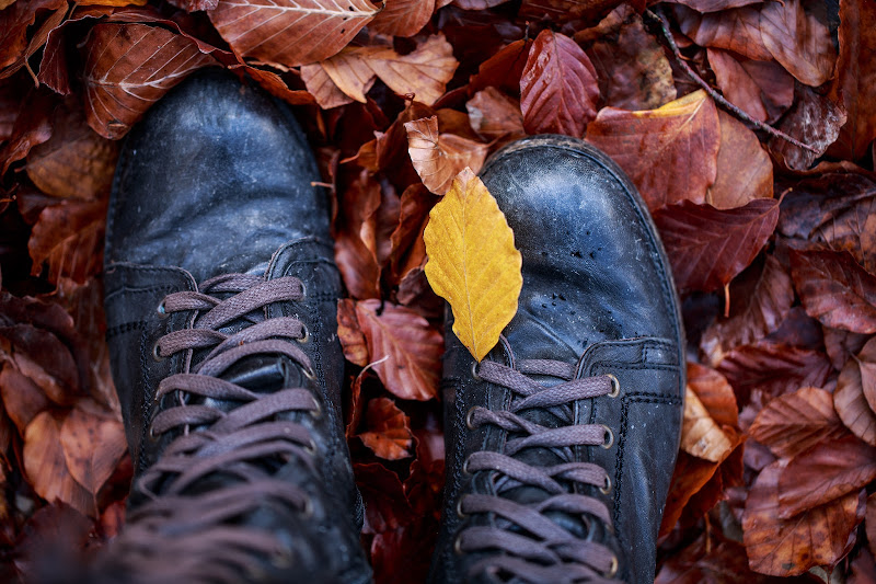My old combat boot in a fall wood di Tindara