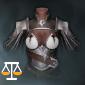 初心者の正義の鎧