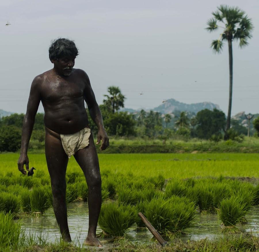 by Babu Raj - People Portraits of Men
