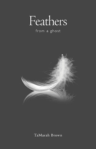 Feathers from a Ghost cover