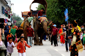 Photo: Day 261 -  Elephants in the 15 Year Anniversary Procession