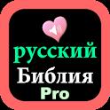 Russian English Audio Bible icon