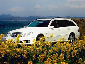 Eクラス ステーションワゴン W211 W211 E350のカスタム事例画像 福さん55さんの2020年11月19日18:10の投稿