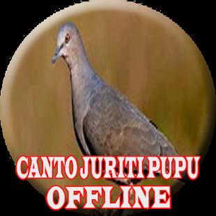 O canto da juriti pupu (OFFLINE) - náhled