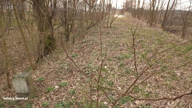 Photo: Jak widać z powyższego zdjęcia prawdopodobnie wiadukt leżał między km 24,9 a 25 linii