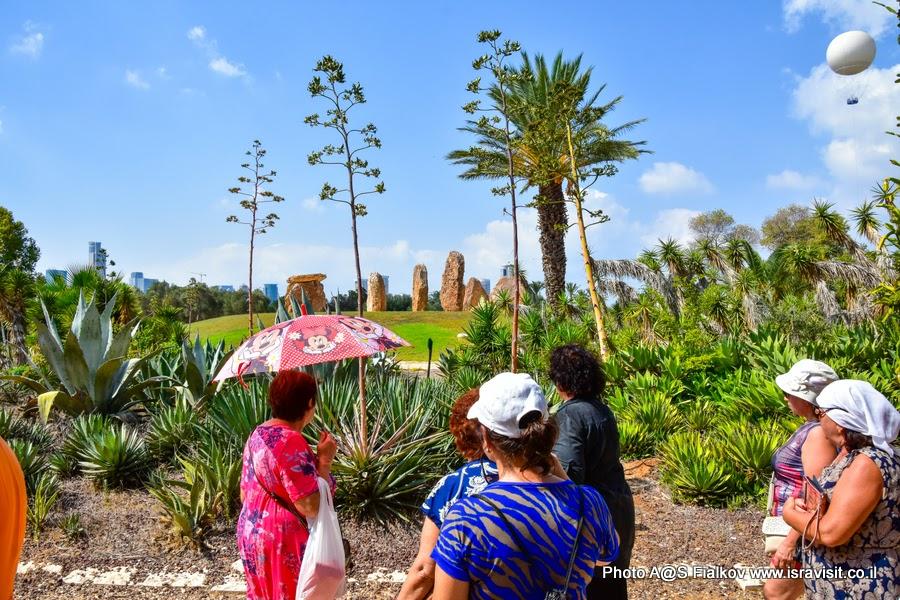 Экскурсия в Тель Авиве. Парк кактусов.