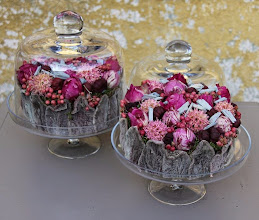 Photo: Duo glazen stolpjes pioencake gevriesdroogd