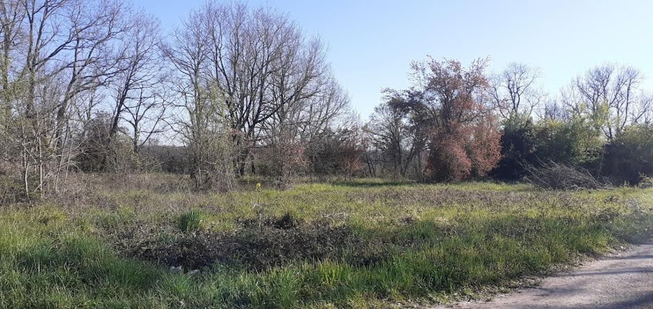 Vente terrain  1506 m² à Montricoux (82800), 52 000 €