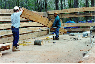 Photo: Some of the logs weigh as much as 800 pounds (360 Kilos), but they went up effortlessly with the block and tackle.