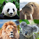 Download Guess: Animals Quiz For PC Windows and Mac