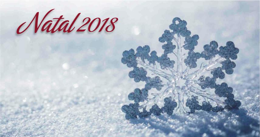 Luna Hotels & Resorts | Web Oficial - Christmas Luna Arcos Hotel