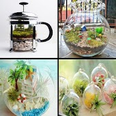 Design Terrarium Ideas Android APK Download Free By Femilyadroid