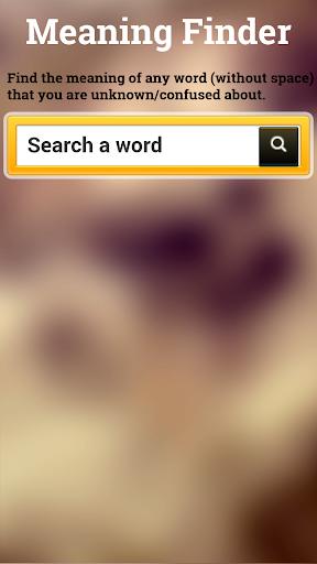 Meaning Finder