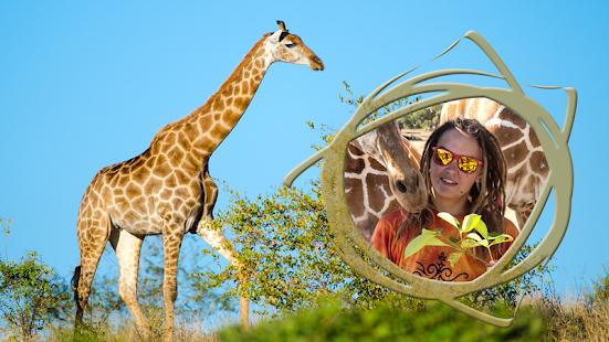 Giraffe Photo Frames - náhled